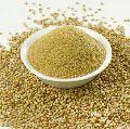 Coriander Seeds & Powder