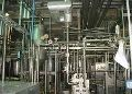Evaporated Milk Plant