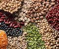 Pulses/Legumes