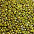 Green Moong Lentils