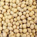 Natural Soybean