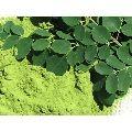 100% Pure Moringa Leaves Powder