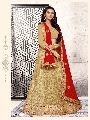 Net Silk fabric,Embroidery work, Lehenga Choli