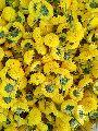 marigold flowers (Yellow)