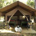 Canvas Brown Resort Tents