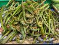 Natural Organic Lingru