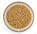 White Soybean Seeds