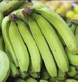 Fresh Raw Green Banana
