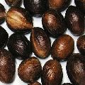 Shelled Nutmeg