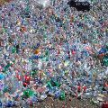 Recycled Pet Bottle Scrap