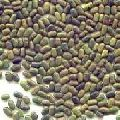 Natural Sesbania Seeds