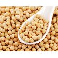 High Quality Soybean Seeds