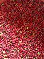 Red Shatavari Seeds
