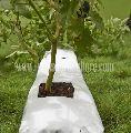 Coco Peat Planter Grow Bag