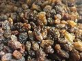 Organic Seedless Raisins
