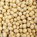 White Soybean Seeds