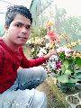 Artificial Orchids  Plant