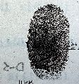 Fingerprint Verification Systems