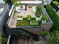 Terrace Garden Interior Designing Service