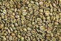 Arabica Coffee Parchment Green Beans (Grade A & A)