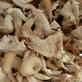 Natural Dried Oyster Mushroom