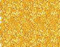 Organic Yellow Lentils