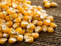 Natural Yellow Maize