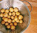 Fresh Small Potato