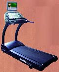 Stallion 1003 Motorized Treadmill