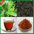 Darjeeling Tea Powder