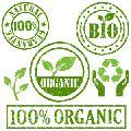 Organic psyllium - Certified