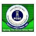PESO Consultancy Services