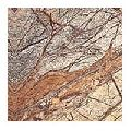 Forest Brown Marble Tiles