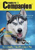 Theme Based Magazines