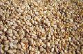 Sesame seeds for sale