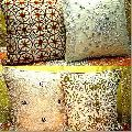 Cotton Cushion Covers - 02