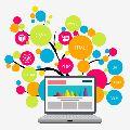School website designing services