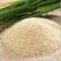 Non Basmati Raw Rice