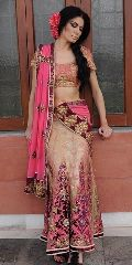 Embroidered Pink and Golden Net Lehenga Choli