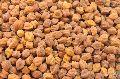 Bengal Gram Seeds