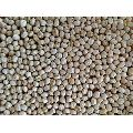 Dried Solid Chick Peas