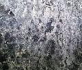 Afyon Grey Marble
