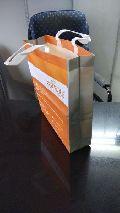 Bopp Printed Non Woven 3D Fancy Bags