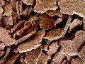 Ground Nut Cake (Chekku Kadalai Punnaku)