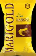 MARIGOLD SHRIMA FEED