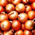 Nasik Onion