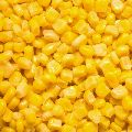 IQF Frozen Sweet Corn