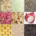 Agro Food Processing Services