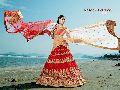 Beguile Red Fancy Net Designer Lehenga Choli