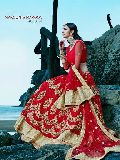 Bountiful Red Fancy Net Designer Lehenga Choli